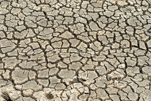 Gebarsten gedroogde grond in een droog gebied
