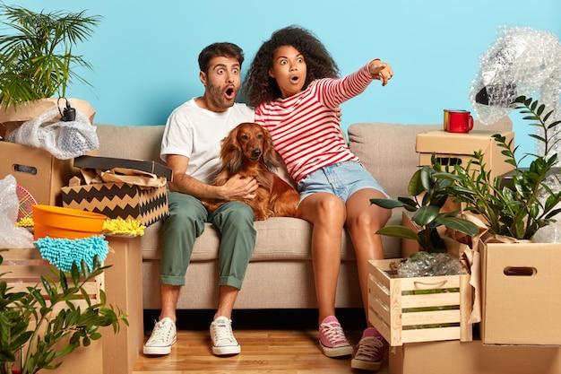 Gebarsten gemengd ras familiepaar wijst in de verte, ziet verbazingwekkende dingen, merkt iets vreselijks op, zit op een comfortabele bank met hond, verandert van woonplaats, omringd met pakketten, persoonlijke spullen
