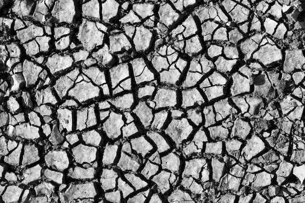 Gebarsten grond. in z/w. gebruik voor achtergrond of textuur