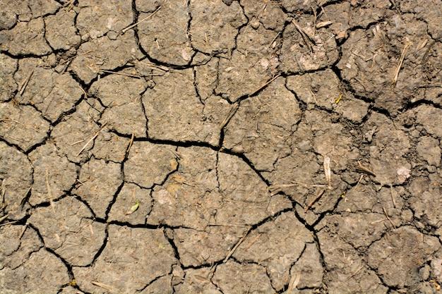 Gebarsten uitgedroogde, levenloze grond