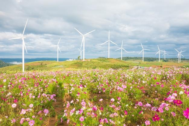 Gebied van kosmosbloemen met windturbines en wolkenhemelachtergrond.