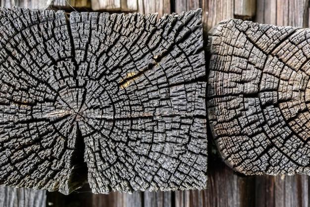 Gebouw detail. gedeelte van de oude den boomstam met jaarringen en scheuren.