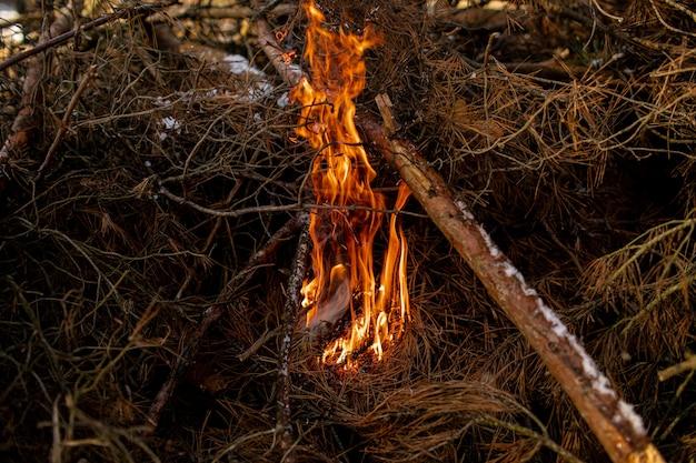 Gebrand brandhout in open haard en brand dicht omhoog