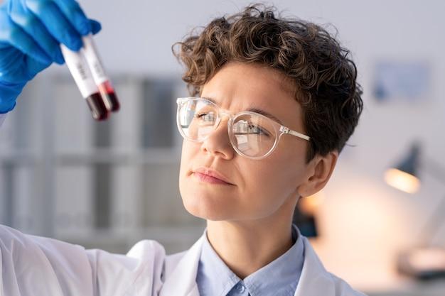 Geconcentreerde laboratoriumspecialist die laboratoriumtest van bloedmonsters houdt en vergelijkt