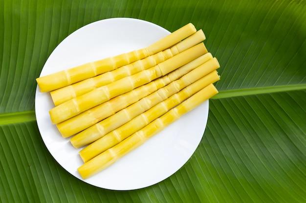 Geconserveerde bamboescheuten in witte plaat op bananenblad