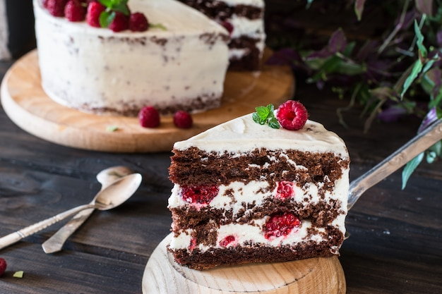 Gedeelte romige fruitcake. raspberry cake met chocolade. chocoladetaart. mint decor. chee