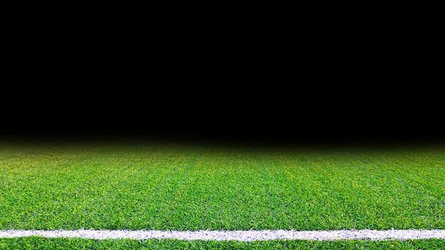 Gedetailleerde groene het grastextuur van het voetbalgebied