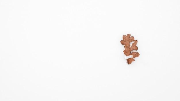 Gedroogd eikenblad dat op de sneeuw ligt. bovenaanzicht, kopieer ruimte. winter rustige stemming. natuurlijke achtergrond. minimalistisch natuurconcept