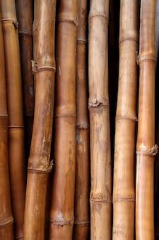 Gedroogde bamboestok kofferbak textuur
