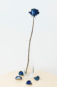 Gedroogde blauwe roos in een heldere vaas op een beige tafel