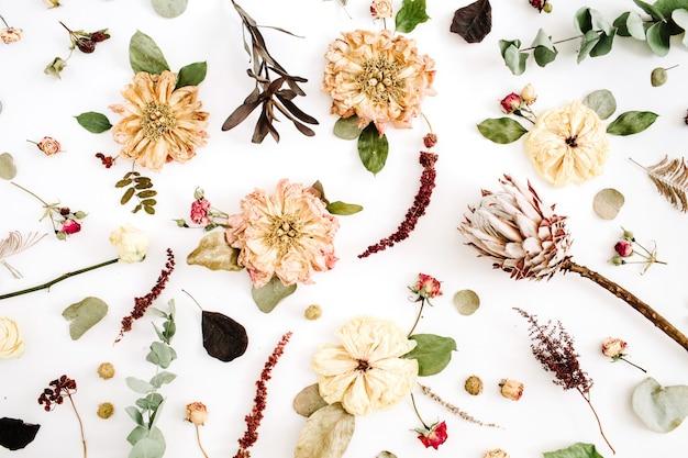Gedroogde bloemen: beige pioenroos, protea, eucalyptustakken, rozen op wit