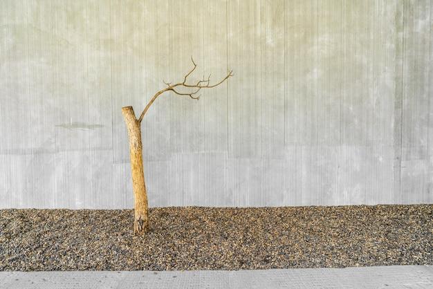 Gedroogde boom versieren met betonnen muur en kopieer de ruimte