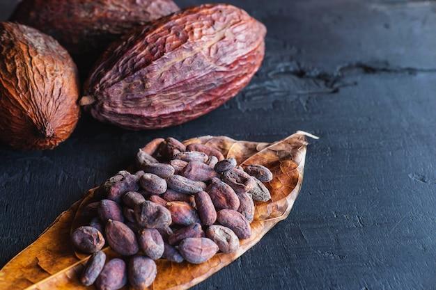 Gedroogde cacaobonen en gedroogde cacao Premium Foto