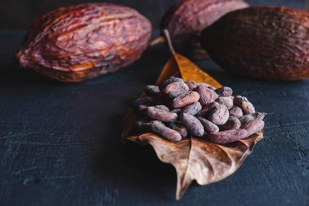 Gedroogde cacaobonen en gedroogde cacao