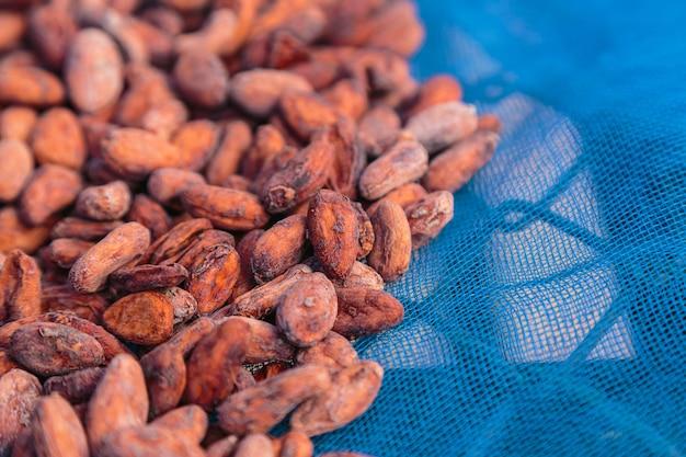 Gedroogde en in de zon gedroogde cacaoboon achtergrond