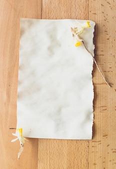 Gedroogde gele bloemen liggend op oud blanco vel papier. plaats voor tekst