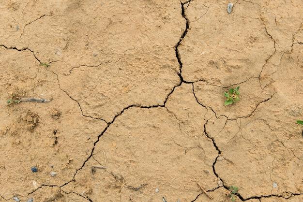Gedroogde grond bedekt met scheuren