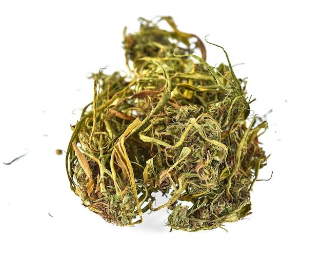 Gedroogde hennep (cannabis) geïsoleerd op wit