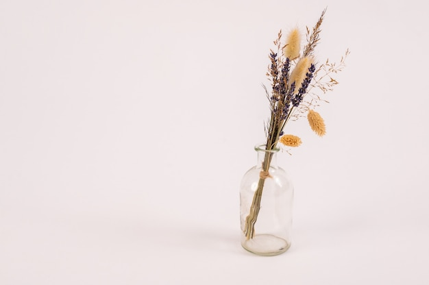 Gedroogde lavendel bloemen bos in vaas close-up geïsoleerd