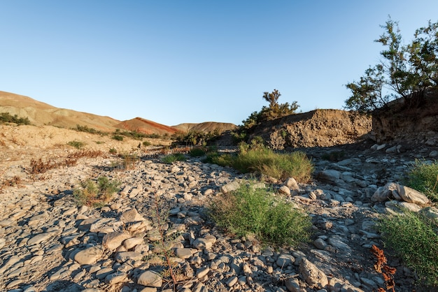 Gedroogde rivierbedding van een bergrivier