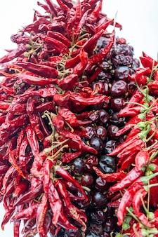 Gedroogde rode chili paprika hangen in bos hang