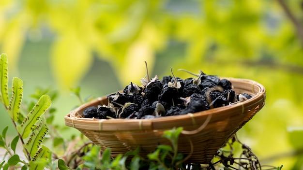 Gedroogde zwarte gojibessenvruchten in bamboemand op aardachtergrond.
