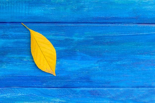 Geel blad op blauwe achtergrond. herfst concept.