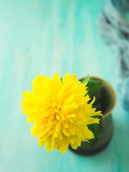 Geel bloemclose-up