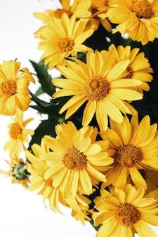 Geel madeliefje bloemen boeket geïsoleerd op wit