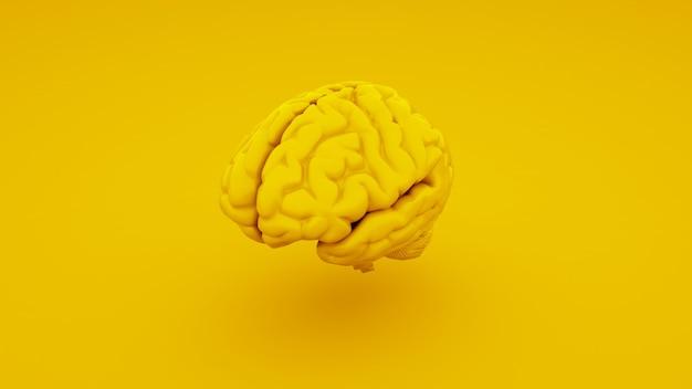 Geel menselijk brein, anatomisch model. 3d illustratie.