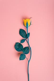 Geel nam op roze achtergrond met blauwe bladeren toe