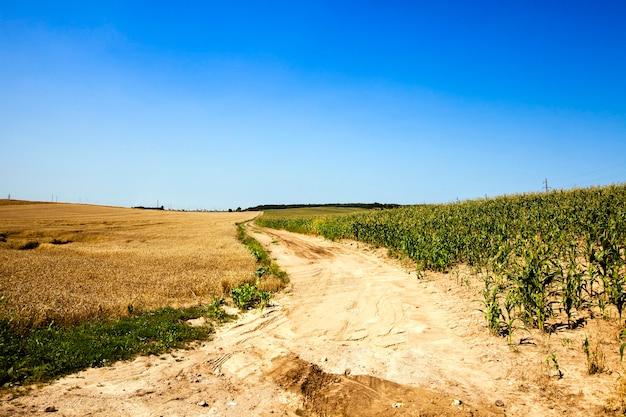 Geen geasfalteerde landelijke weg door een landbouwgebied