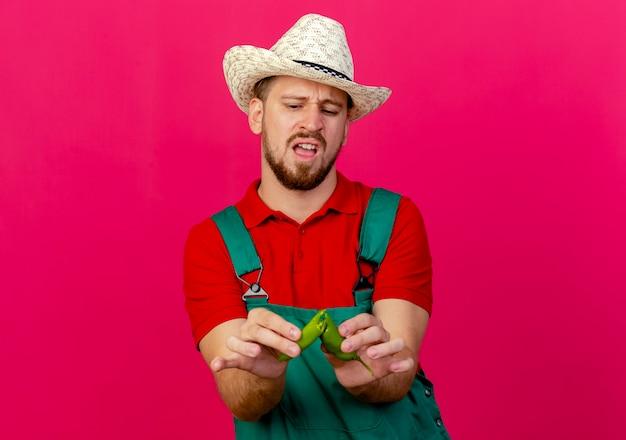 Geërgerd jonge knappe slavische tuinman in uniform en hoed houden en kijken naar peper helften