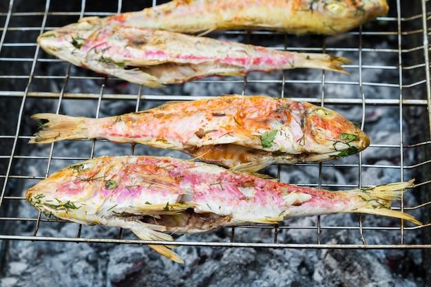 Gegrilde vis met kruiden in brand. grillen vis surmullet op kampvuur (bbq).