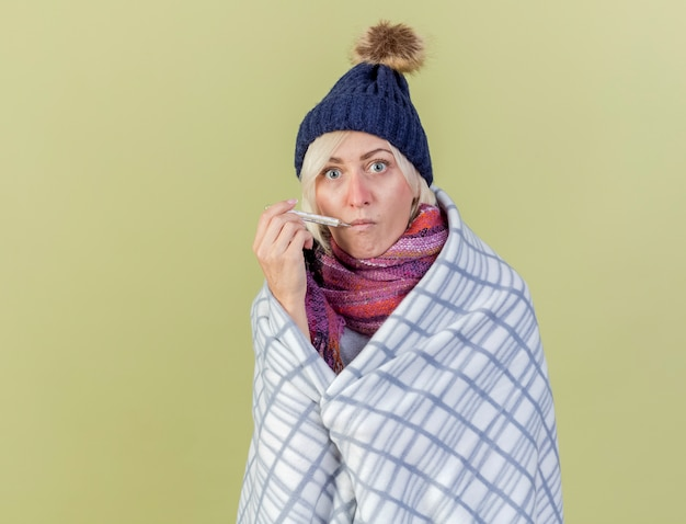 Geïmponeerde jonge blonde zieke vrouw met muts en sjaal gewikkeld in plaid zet thermometer in mond geïsoleerd op olijfgroene muur