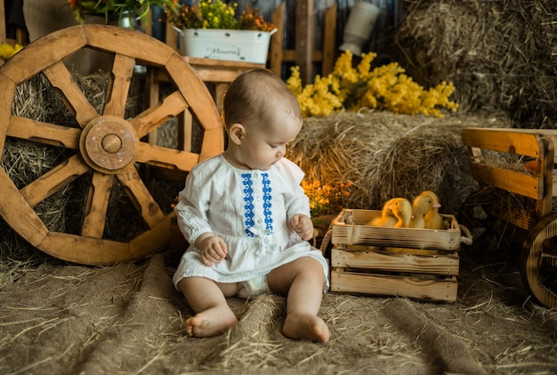 Geïnteresseerde babymeisje in een linnen jurk zit op het stro met eendjes in de schuur