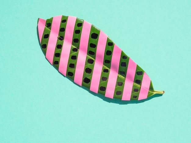 Geïsoleerd ficusblad met roze strepen op blauwe achtergrond