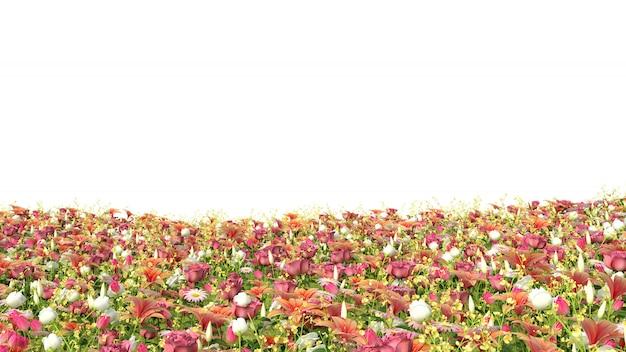 Geïsoleerd gebied van bloemen