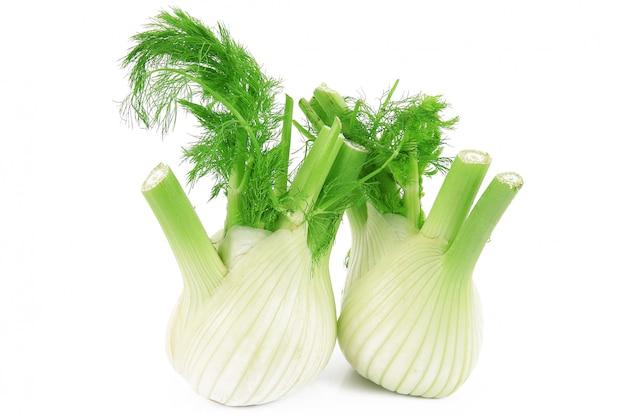 Geïsoleerde fennels