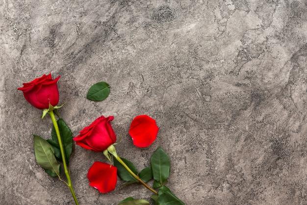 Geïsoleerde rode rozen op een grijze achtergrond
