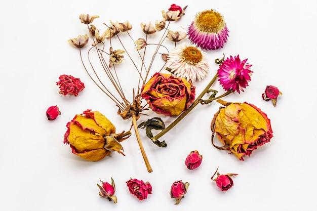 Geïsoleerde samenstelling van droge bloemen. rozen, kers, xerantemum