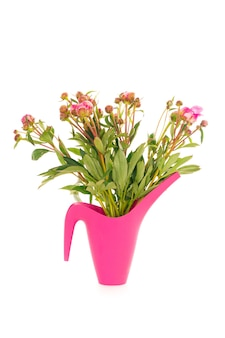 Geïsoleerde verticaal van roze rozen in een roze plastic vaas voor een witte muur