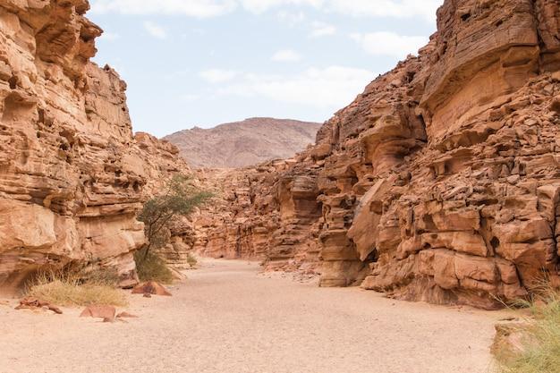 Gekleurde canyon met rode rotsen. egypte, woestijn, het sinaï-schiereiland, dahab.