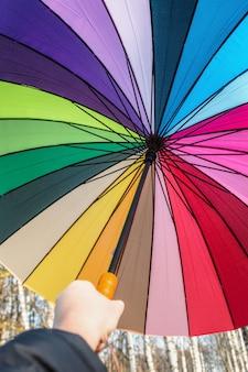 Gekleurde geopende paraplu in de hand. herfst bos