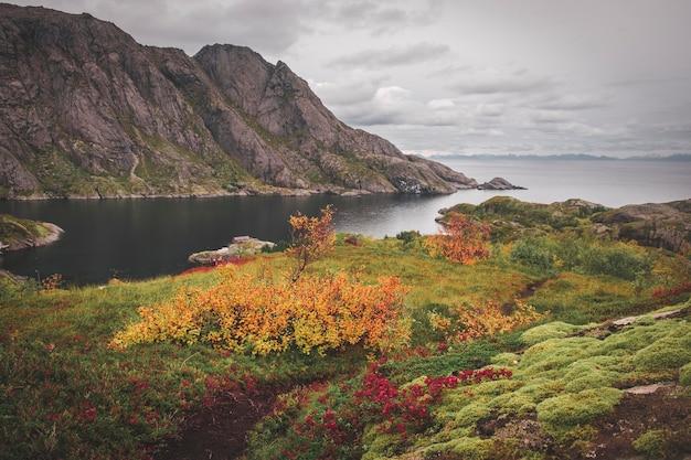 Gekleurde heldere bergen boven het vissersdorpje nusfjord