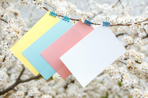 Gekleurde kaarten voor inscripties, witte bloemen van kersen Premium Foto