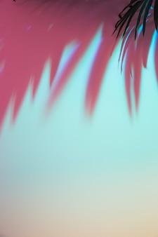 Gekleurde schaduw van bladeren op gekleurde achtergrond