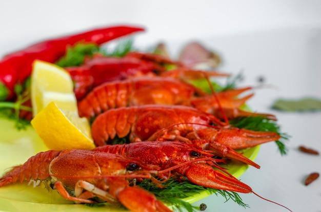 Gekookte rode rivierkreeft of rivierkreeft met dillekruiden. detailopname. rivierkreeftfeest, restaurant