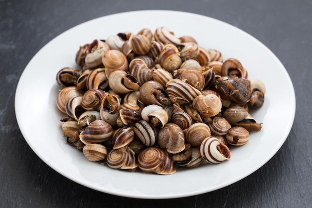 Gekookte slakken op witte plaat op keramiek