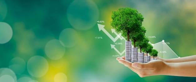 Geld besparen investeringen gezinsplanning geld groei zakelijk succes concept